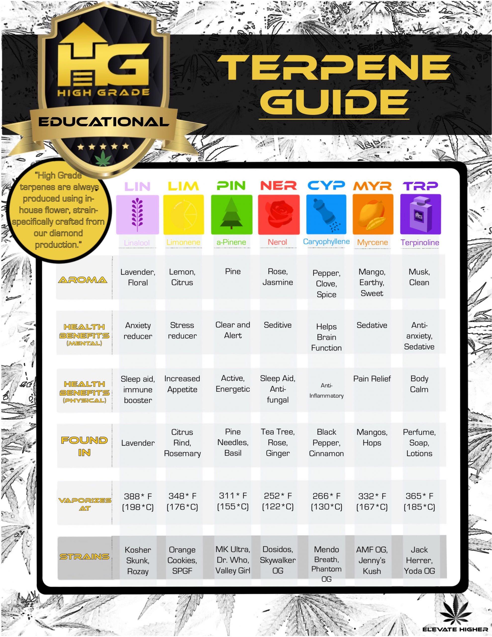 Terpene Guide